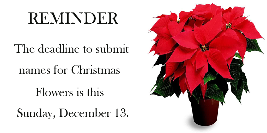 Flower Deadline STJ 2 (this Sunday)